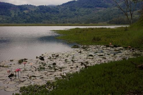 Laguna Oconal, Villa Rica