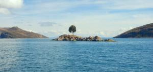 La isla del arbol