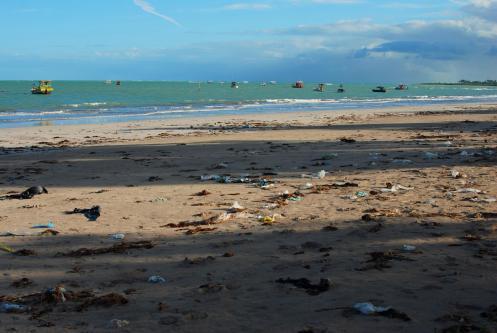 basura que el mar devuelve