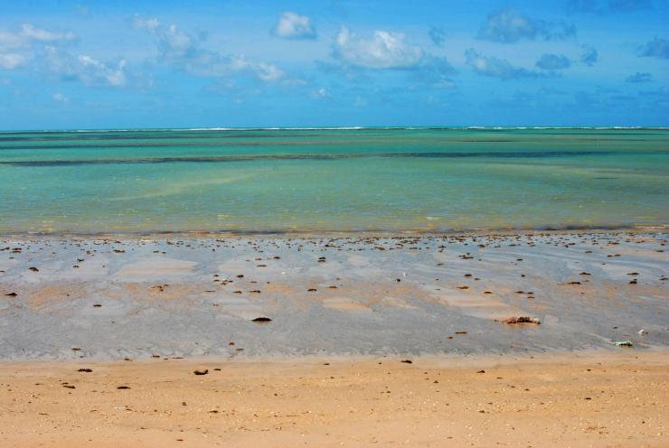 verdes del mar
