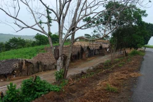 viviendas de los trabajadores de la caña