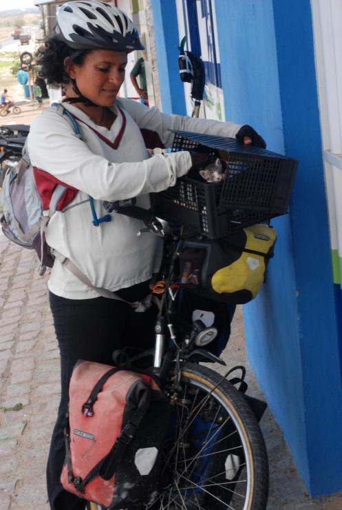 así es como llevamos a Pedal