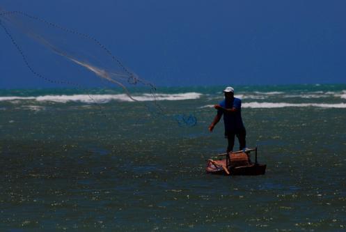 el arte de la pesca