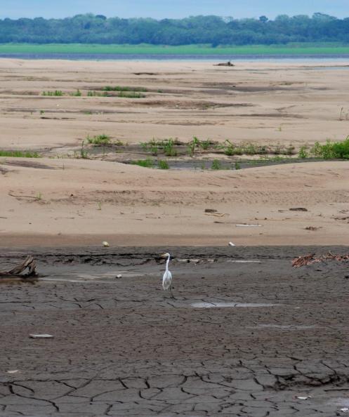 El Amazonas se seca