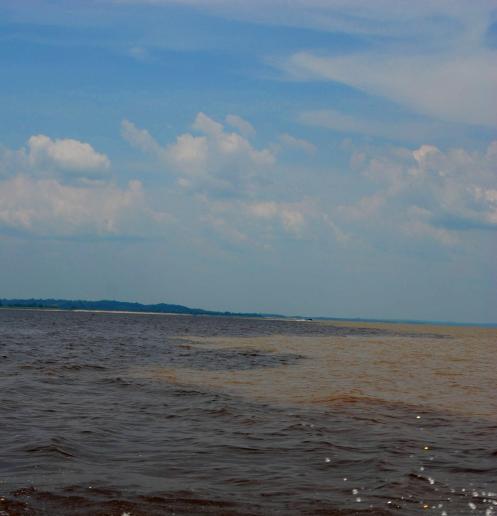 el encuentro de las aguas