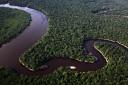 Fotografía de Rodrigo Baleia para Greenpeace- Parque Nacional doJau