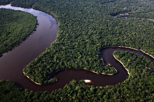 Fotografía de Rodrigo Baleia para Greenpeace- Parque Nacional do Jau